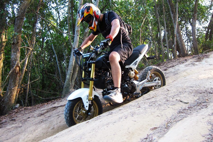 Honda MSX 125 Sand
