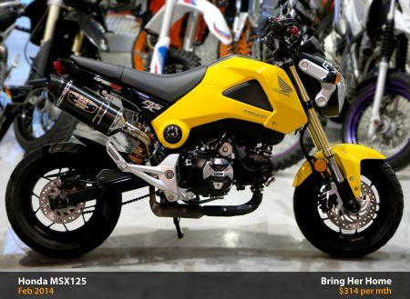 Honda MSX125 (Used 2013)